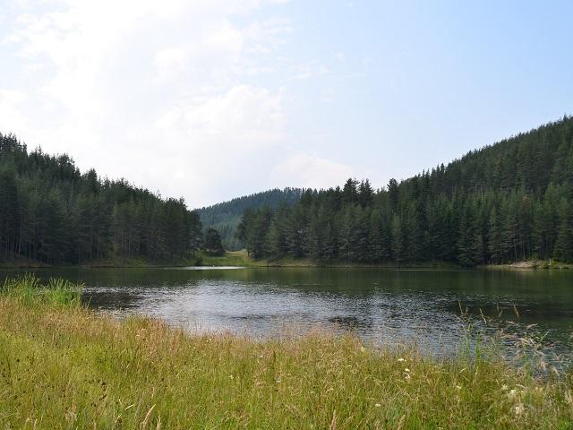 Резерват Кастракли