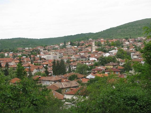 panorama_bratsigovo