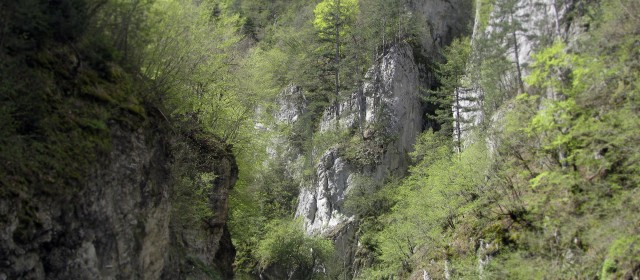 На 6 и 7 септември село Ягодина ще се огласи от  фолклорна музика