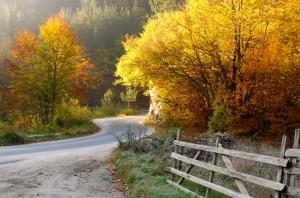 есен-в-регион-Западни-Родопи